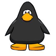 Blackducky