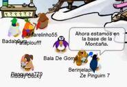 Moderadores de Club Penguin en español reunidos