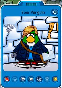 Player de Your Penguin