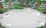 Bosque Ubicación