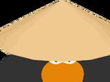 Sensei's Hat