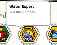 Water expert stamp book