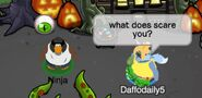 Daffodaily5 (a Ninja): ¿Qué te asusta?