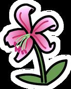 Lily Pin