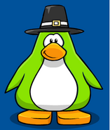 Pilgrim Hat New PC