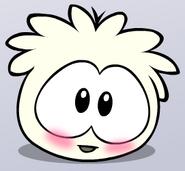 Whitepuffletickle2