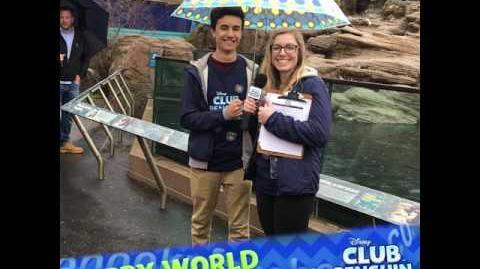 World Penguin Day Aquarium Recap Disney Club Penguin Island