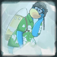 Dani congelado