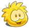 Gold puffle!