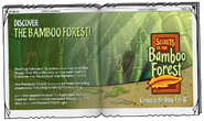 Secrets of the Bamboo Forest ad 2