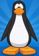 Creando un pingüino Negro