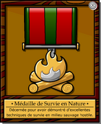 Mission 2 Medal full award fr