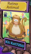 Reino Animal Ganador