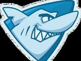 Team Sharks