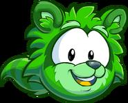 15. Mapache Verde