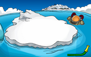 Water Party 2008 Iceberg