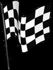 Checkered Flag clothing icon ID 5193