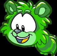 Puffle mapache verde gracia