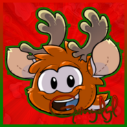 OrangePuffle Christmas Icon