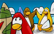 Penguins at cove