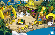 10th Anniversary Party Cove 2