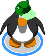 Green Raccoon Hat in-game