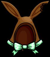 CocoaBunnyEars