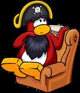 Rockhopper Sitting