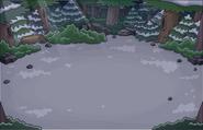 Bosque Ubicación Noche