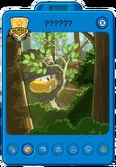 Sasquatch player card