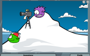640px-Case Of The Missing Puffles pic 014