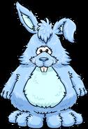 Blueberry Bunny Costume PC