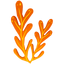 Quest item Orange Seaweed icon