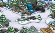 Bosques nuevo