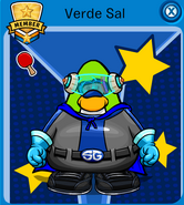 Verdesal9