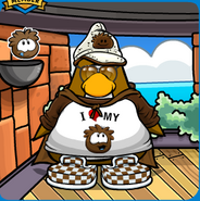 Brown Puffle Mariocart25