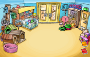 Sensei's Fire Scavenger Hunt Pet Shop