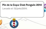 Pin 2 (Copa CP)