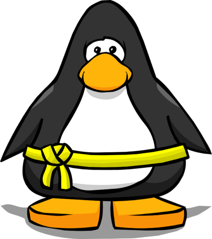 File:Yellow Belt from a Player Card.PNG