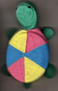 Color Turtle