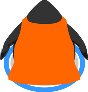 Orange Cape In Game