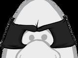 Cat Burglar Mask