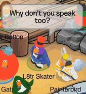 L8tr Skater a Painterbird: ¿Puedes decir algo, por favor?