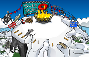 Penguin Games Mountain