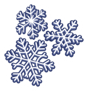 Snow Flakes Pin