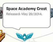 Space Academy Crest Pin stampbook