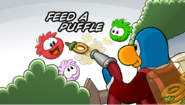 CPGD Minigame Feed A Puffle