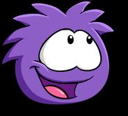 PurplePuffle14
