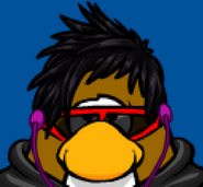 CP-Jnk6 Penguin Face