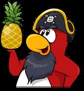 Rockhopper holding Pineapple